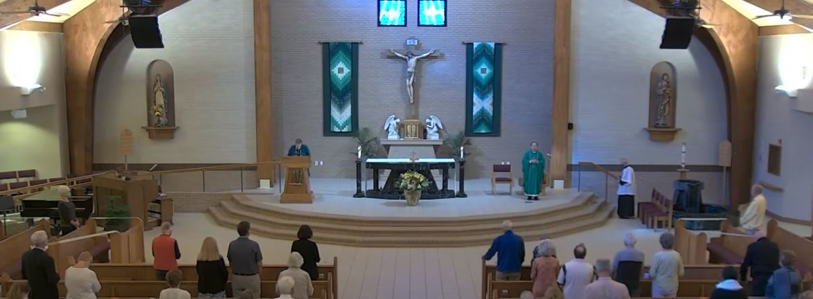 Updated Guidance for Masses, Parish Ministries and Celebrations of the Sacraments
